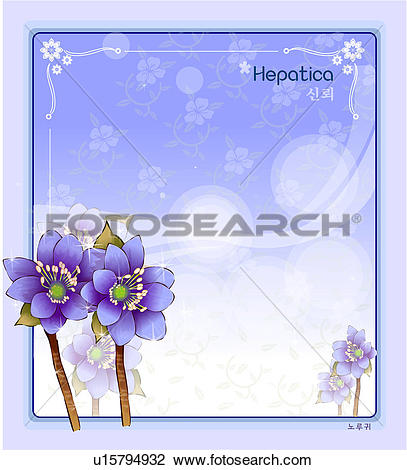 Clip Art of template, nature, hepatica, templet, plant, natural.