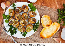Stock Photographs of Escargots de Bourgogne.