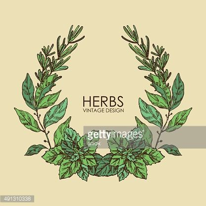 1000+ images about herbal wreaths on Pinterest.