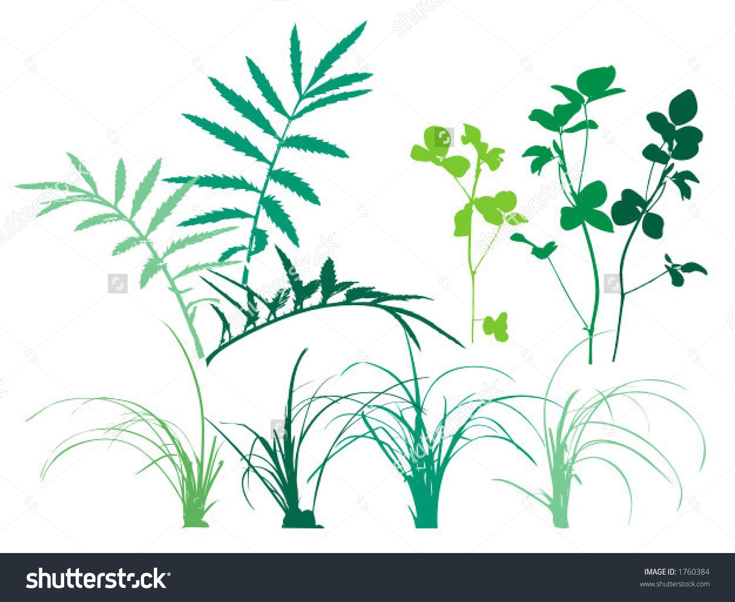 Foliage Patterns Plants Grass Leaves Vector Stock Vector 1760384.