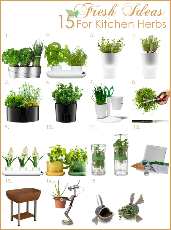 1000+ images about Indoor Herb Gardens/Plants on Pinterest.