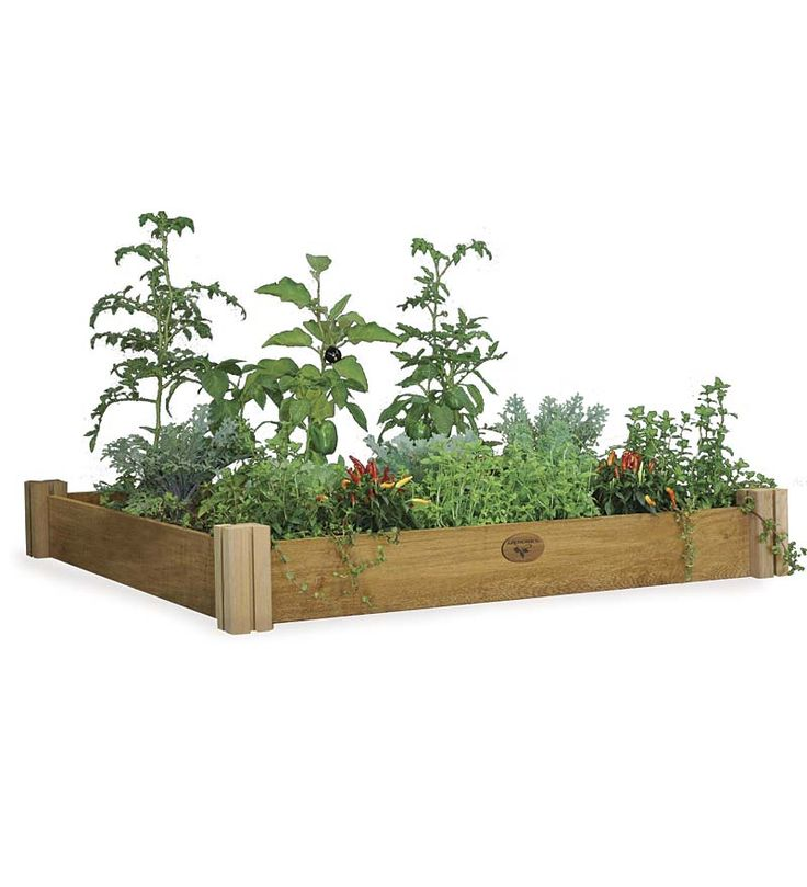 1000+ images about Garden & Compost on Pinterest.