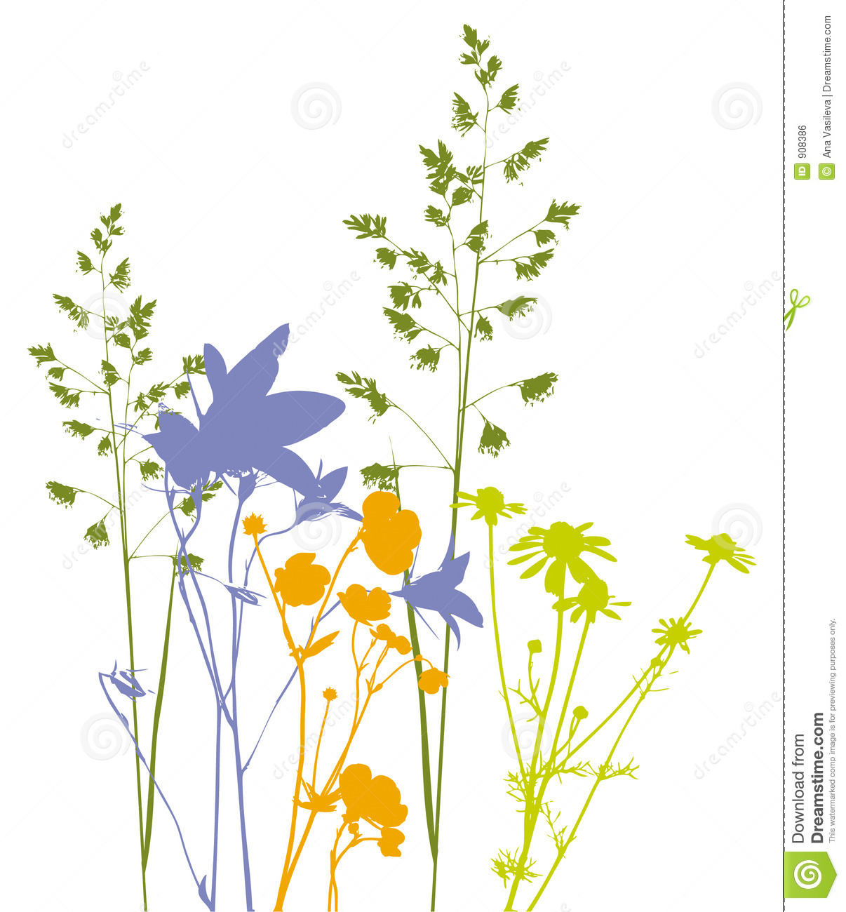 Field Flowers, Herbs And Plants, Vector, Traced Royalty Free Stock.