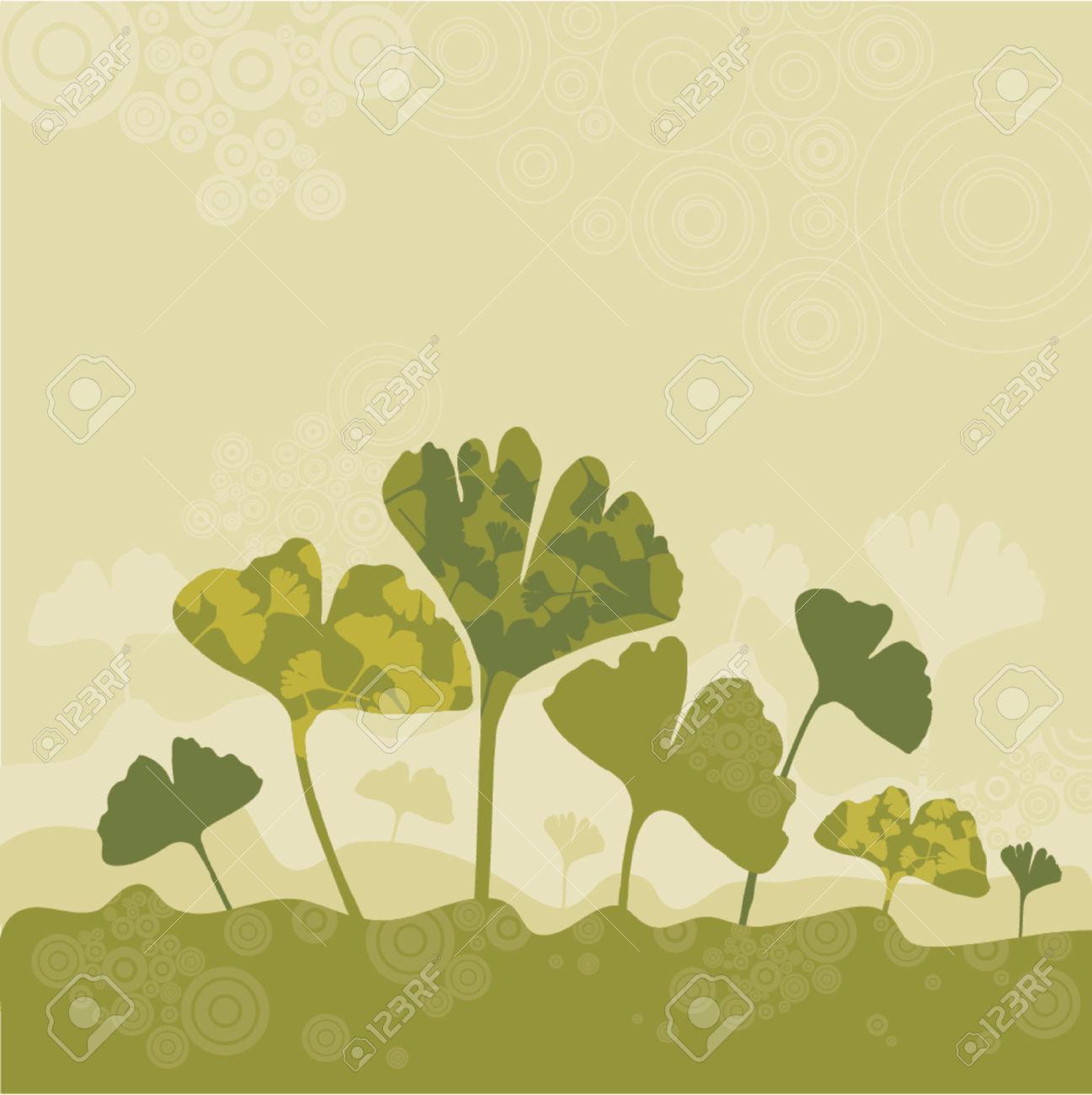 Tree, Leaf, Stem, Herb, Green, Ginko, Curve, Shape, Color, Plant.