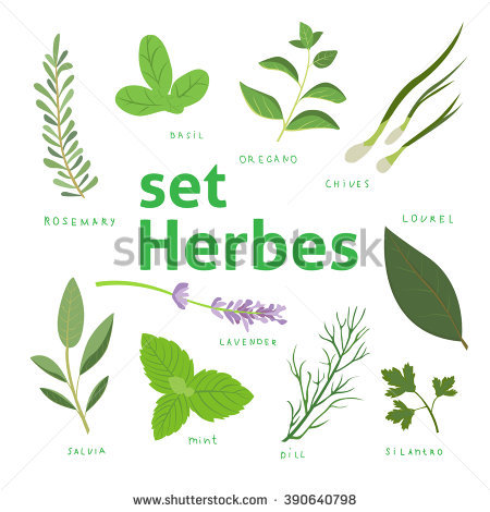 Herba Stock Images, Royalty.