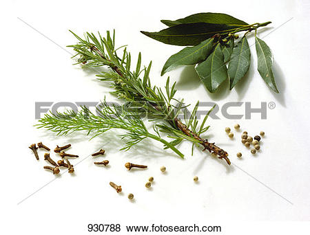 Pictures of Assorted Herbs & Spices 930788.