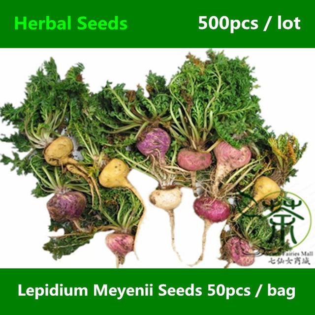 Aliexpress.com : Buy Herbaceous Biennial Lepidium Meyenii Seeds.