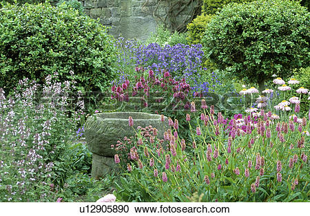 Stock Photography of Stone birdbath among flowering plants in.