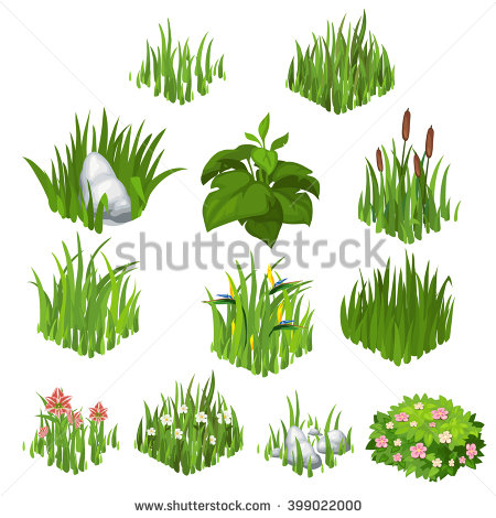 Herbaceous Plants Stock Photos, Royalty.