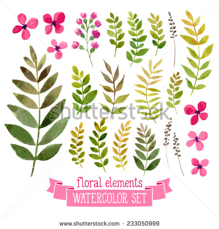 Vector Floral Set Colorful Floral Collection Stock.
