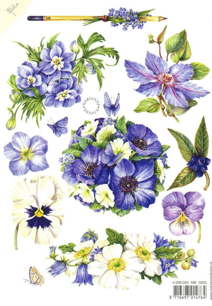 1000+ Bilder zu Watercolour auf Pinterest.