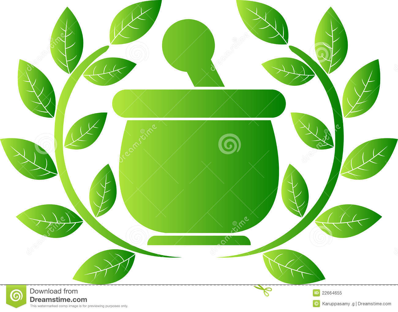 Herbal Stock Illustrations.
