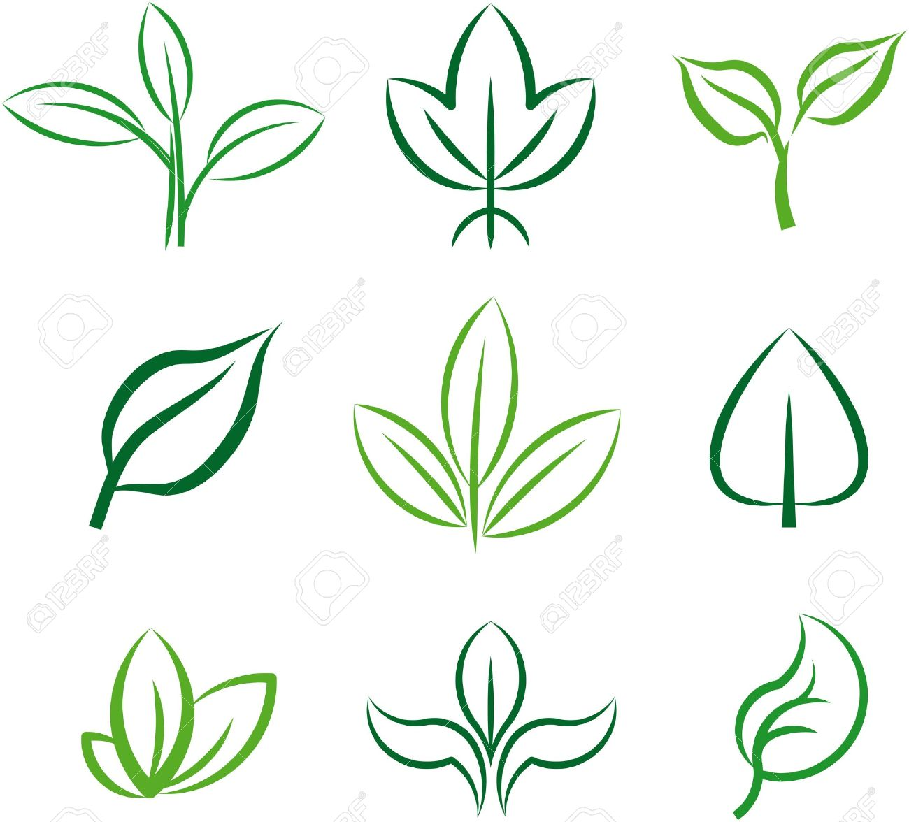 Green Plants And Leaves. Vector Illustration Royalty Free Cliparts.