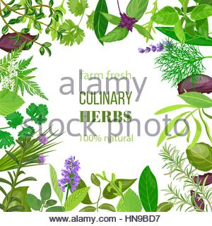 Natural products, food, herbs, market garden, greenhouse, herbs.