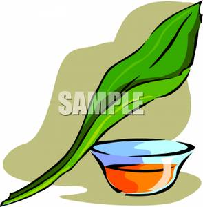 Leaf For Herbal Medicine.