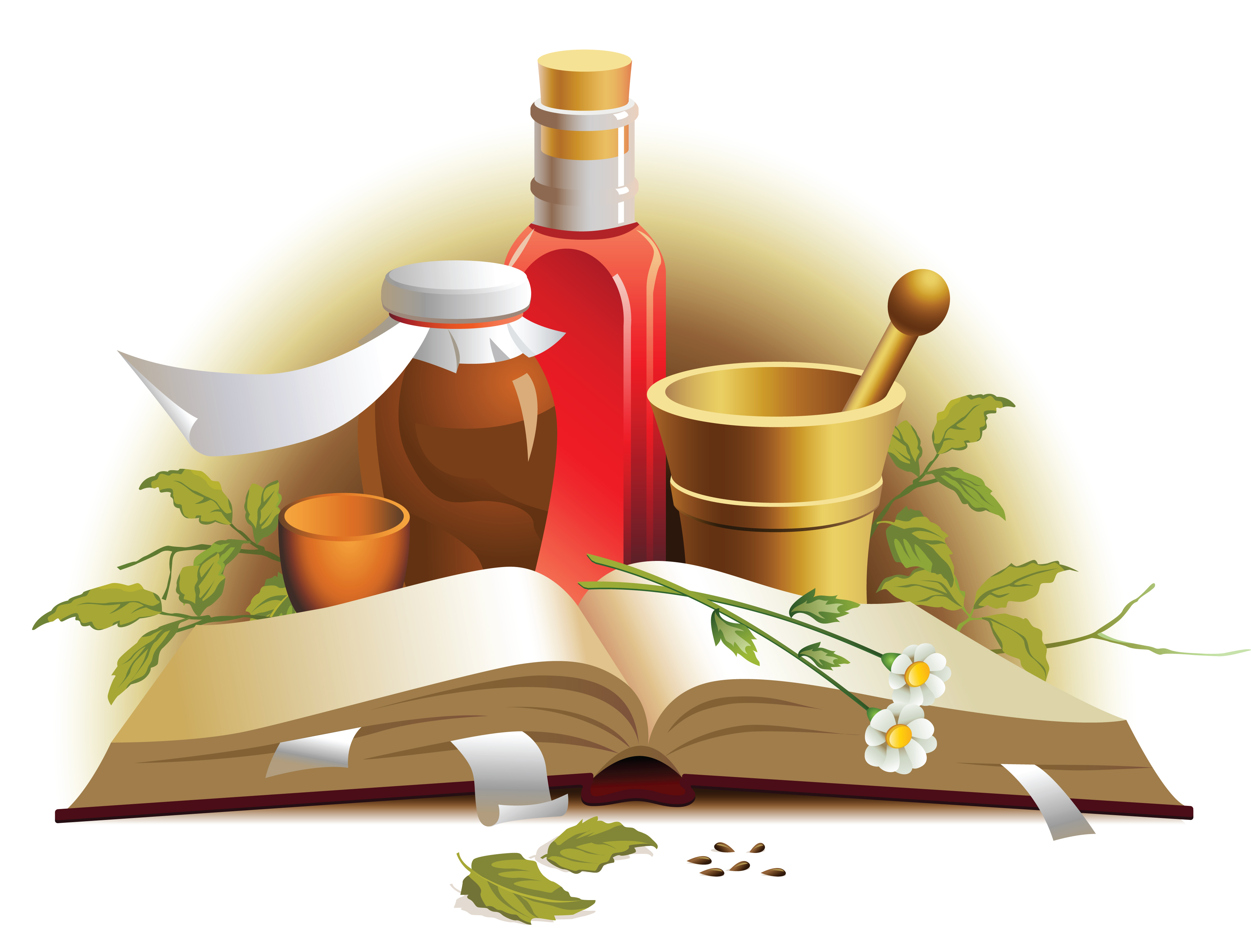 Chinese herbal medicine material Free Vector / 4Vector.