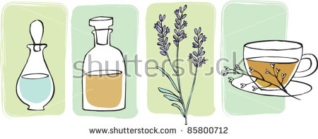 Essential Oils Herbal Tea Lavender Stock Vector 85800712.