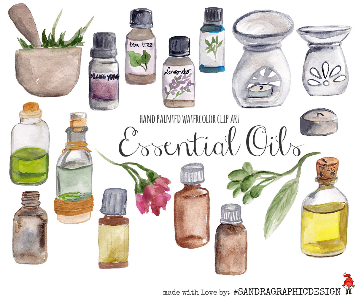 Essential oils clip art, hand painted watercolor clipart (5233.