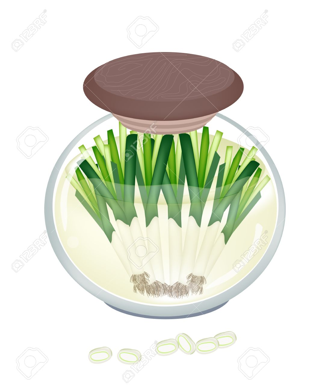 Vegetable And Herb, Illustration Of Delicious Pickled Leeks Or.