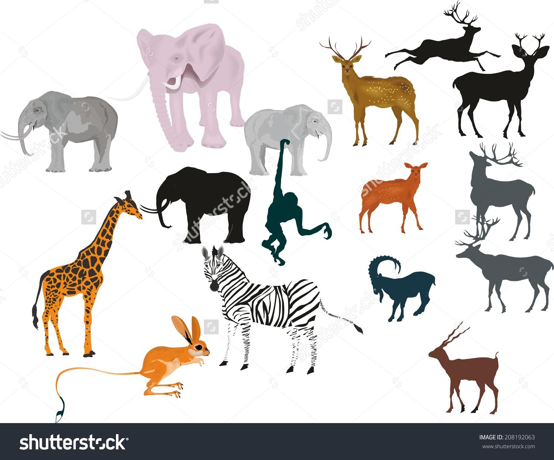 Herbivorous Animals Vector Set Stock Vector 208192063.