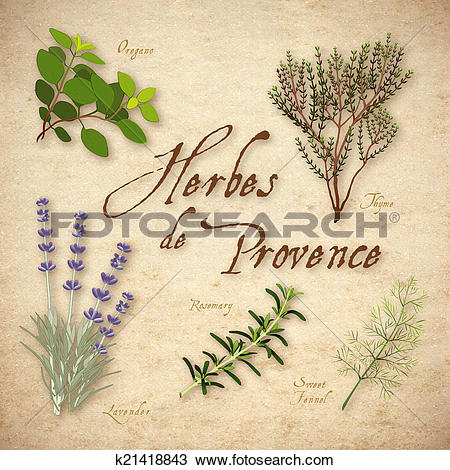 Drawing of Herbes de Provence, Herb Blend k21418843.