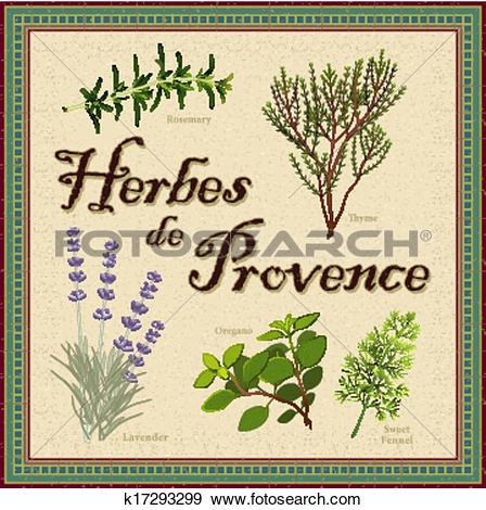 Clip Art of Herbes de Provence French Blend k17293299.