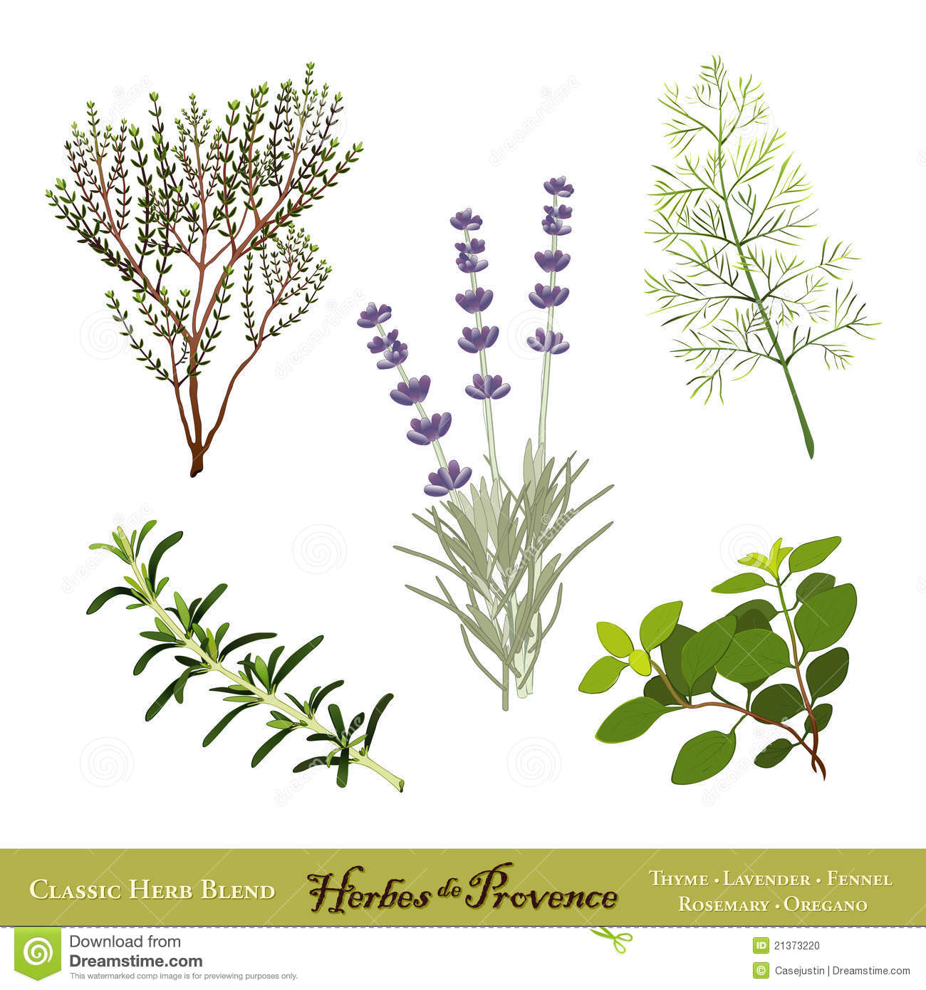 Provence Stock Illustrations.