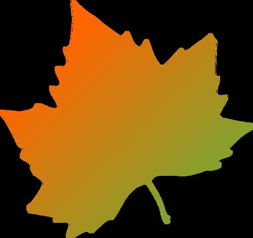 Platane Herbst Blatt Vektor.