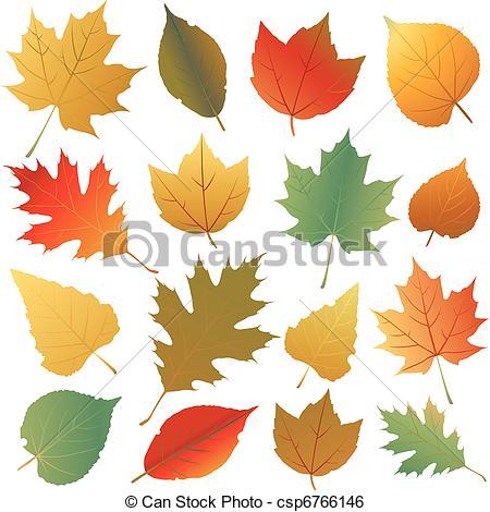 Clip Art Vektor von Herbst, blatt.