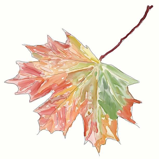 Herbstblatt Clip Art, Vector Images & Illustrations.