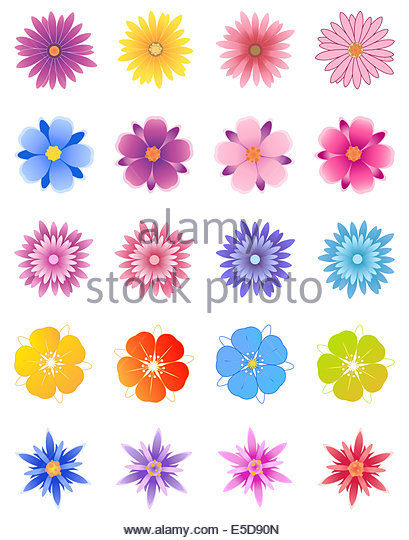 Aster Blue Flowers Stock Photos & Aster Blue Flowers Stock Images.