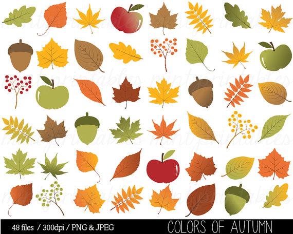 Herbstblatt Clipart Herbst Blätter ClipArt von mintprintables.
