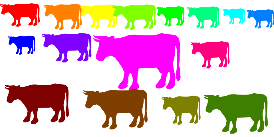 Free vector graphic: Cows, Herd, Animals, Rainbow Colors.