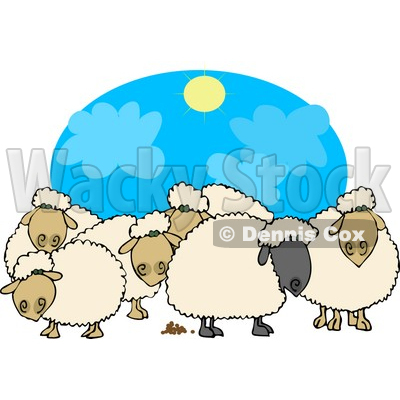 of Black and White Sheep Standing Together Under the Sun Clipart.