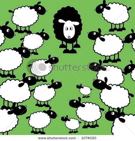 Sheep herd clipart.