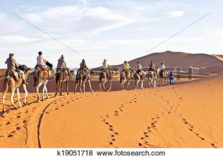 Pictures of Camel caravan going through the sand dunes in the.