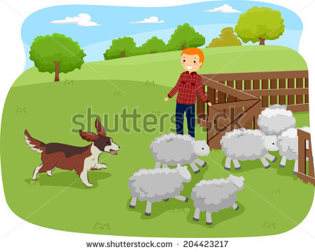 Herding Dog Stock Illustrations & Cartoons.