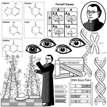Heredity and DNA Clip Art.
