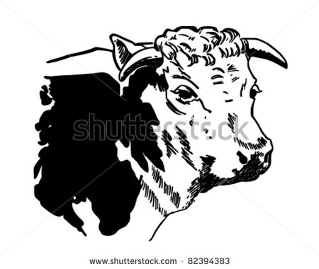 Black Steer Cow Clipart.