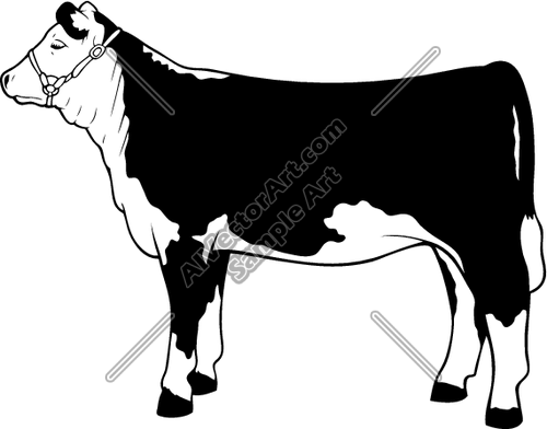Hereford cow clipart.