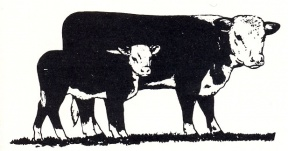 Hereford Clipart Image.