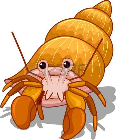 272 Hermit Crab Stock Vector Illustration And Royalty Free Hermit.