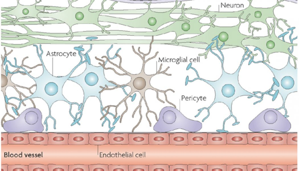 BREAKTHROUGH: New Way To Treat Brain Cancer and Other Neurological.