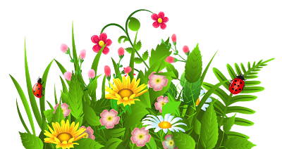 Hernhill Horticultural Society Spring Show Saturday 19th March.