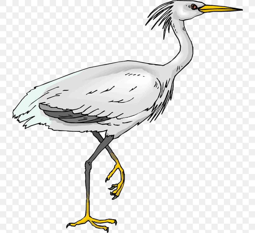 Green Heron Bird Egret Clip Art, PNG, 742x750px, Heron, Beak.