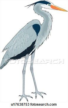 Great Blue Heron Clipart in 2019.