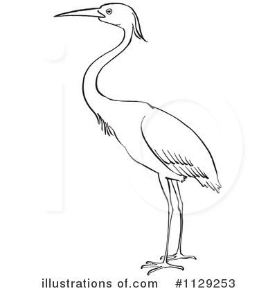 Heron Bird Clipart.