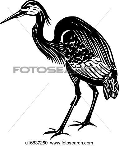 Heron Clipart EPS Images. 879 heron clip art vector illustrations.