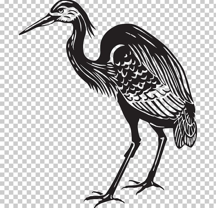 Great Blue Heron Crane Bird PNG, Clipart, Animal, Art, Beak.