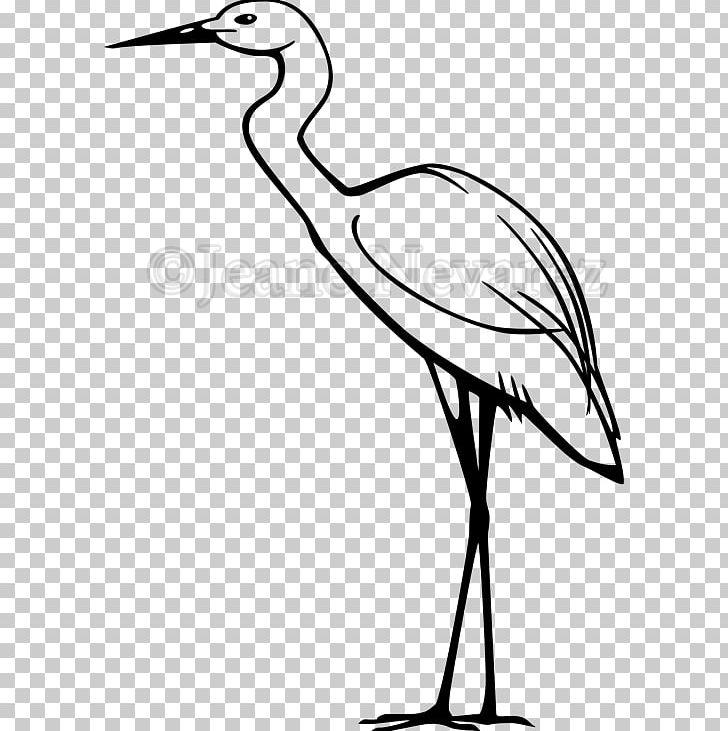 Heron Great Egret Snowy Egret PNG, Clipart, Artwork, Beak.